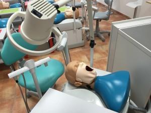 études dentaires